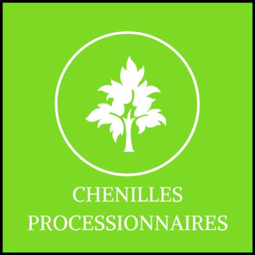 chenilles processionnaires 78 77 91 92 93 94 95 60 Paris